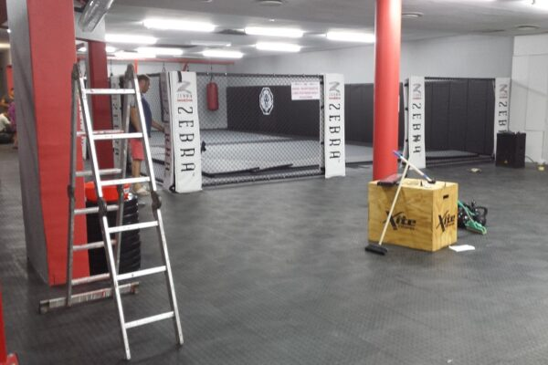 Zebra Installation at Reps