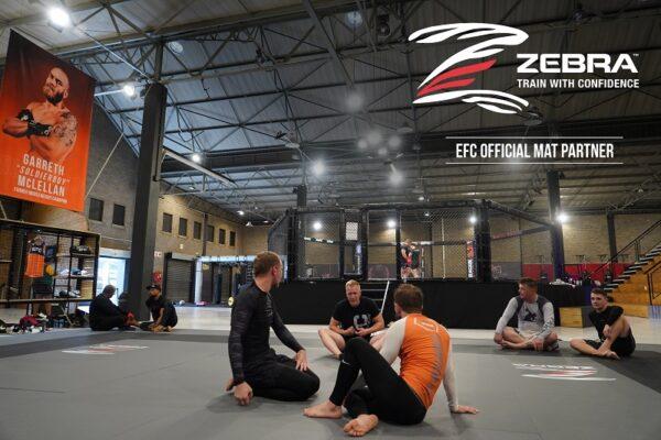 EFC Zebra Partner